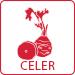 9CZ_Celer