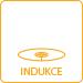 CZ_indukce